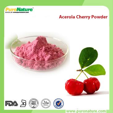 Acerola Cherry Powder 50-81-7