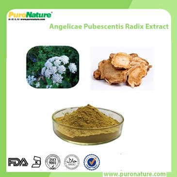 Angelicae Pubescentis Radix Extract