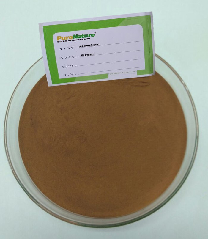 Artichoke Extract powder 5% Cynarin CAS NO.1884-23-7
