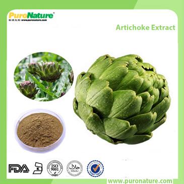 Artichoke Extract 1182-34-9 Cynarin