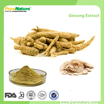 Ginseng Extract rg3 powder Eleutherococcus Senticosus Extract Acanthopanax Extract Siberian Ginseng Extract