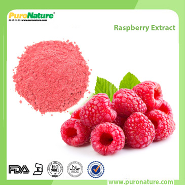 Raspberry Extract 5471-51-2 Raspberry ketone