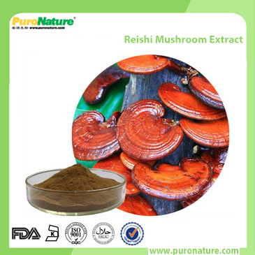 Reishi Mushroom Extract 223751-82-4