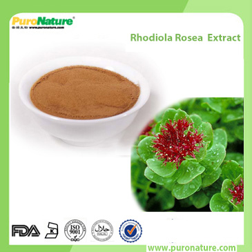 Rhodiola Rosea Extract 10338-51-9 Rosavin