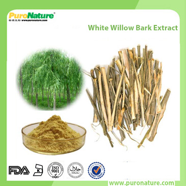 White Willow Bark Extract 138-52-3 Salicin