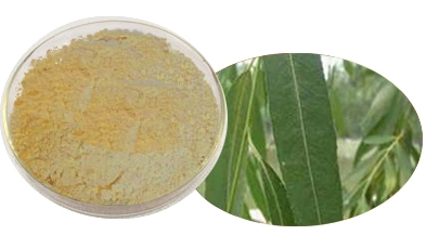 White Willow Bark Extract 95 Salicin cas 138-52-3