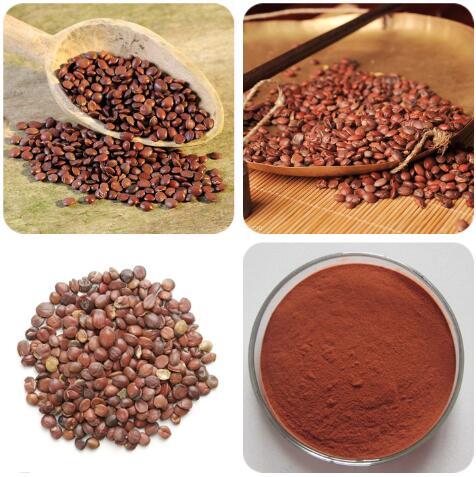 Ziziphus Jujuba Extract Jujubosides 55466-05-2