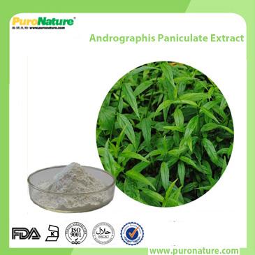 andrographis paniculate extract 5508-58-7 Andrographolide