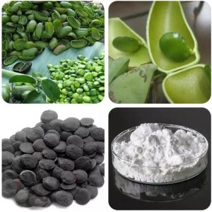 Griffonia Seed Extract 5-HTP 5-Hydroxy Tryptophan 56-69-9
