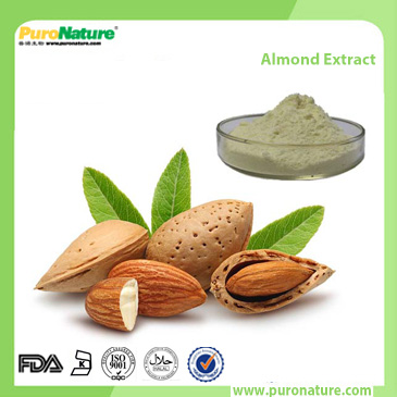 Almond Bitter Apricot Kernel Extract 29883-15-6 Amygdalin