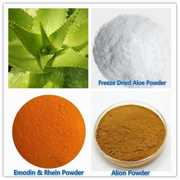 Aloe vera gel freeze dried powder wholesale organic herbal plant manufacturer