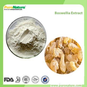 Boswellia Extract 67416-61-9 Boswellic Acid