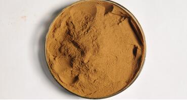 Chaga mushroom extract Polysaccharide 30%