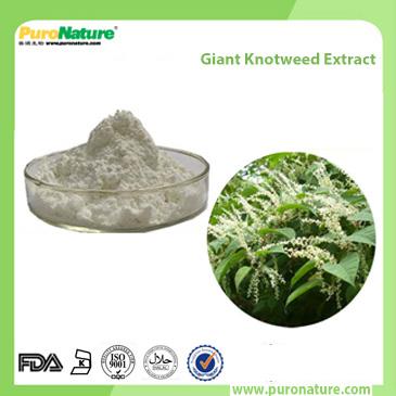 Giant Knotweed Extract 501-36-0 Resveratrol