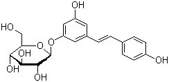 Giant Knotweed Extract Polydatin 65914-17-2