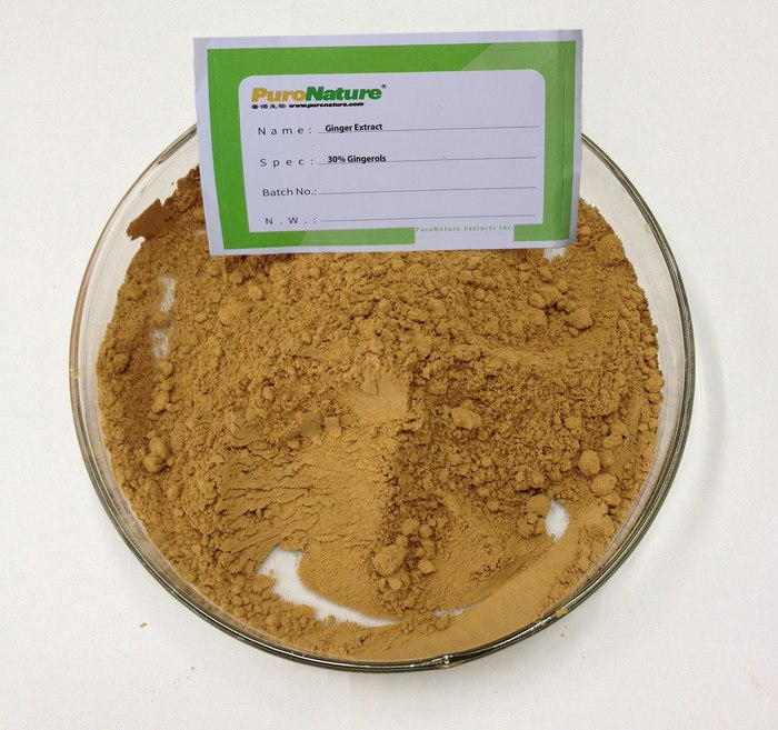 Ginger Extract Powder 30% Gingerol