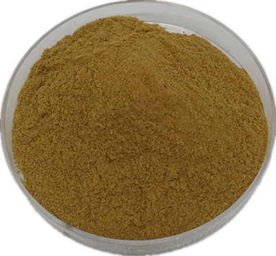 Ginger-Extract-Gingerol-Powder-23513-14-6