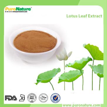 Lotus Leaf Extract 475-83-2 Nuciferine