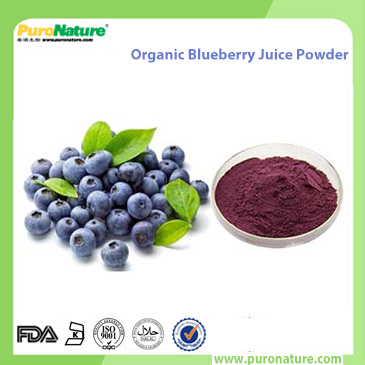 Organic Blueberry Juice Powder
