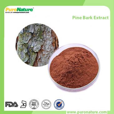 Pine Bark Extract 174882-69-0 Proanthocyanidins