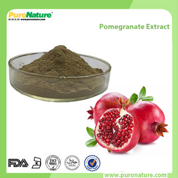 Pomegranate Extract 65996-63-3 Punicalagin