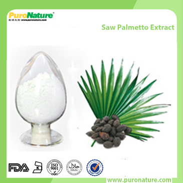 Saw Palmetto Extract 84604-15-9 Fatty Acids