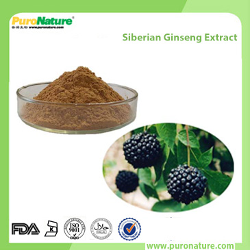 Siberian Ginseng Extract 118-34-3 Eleutheroside