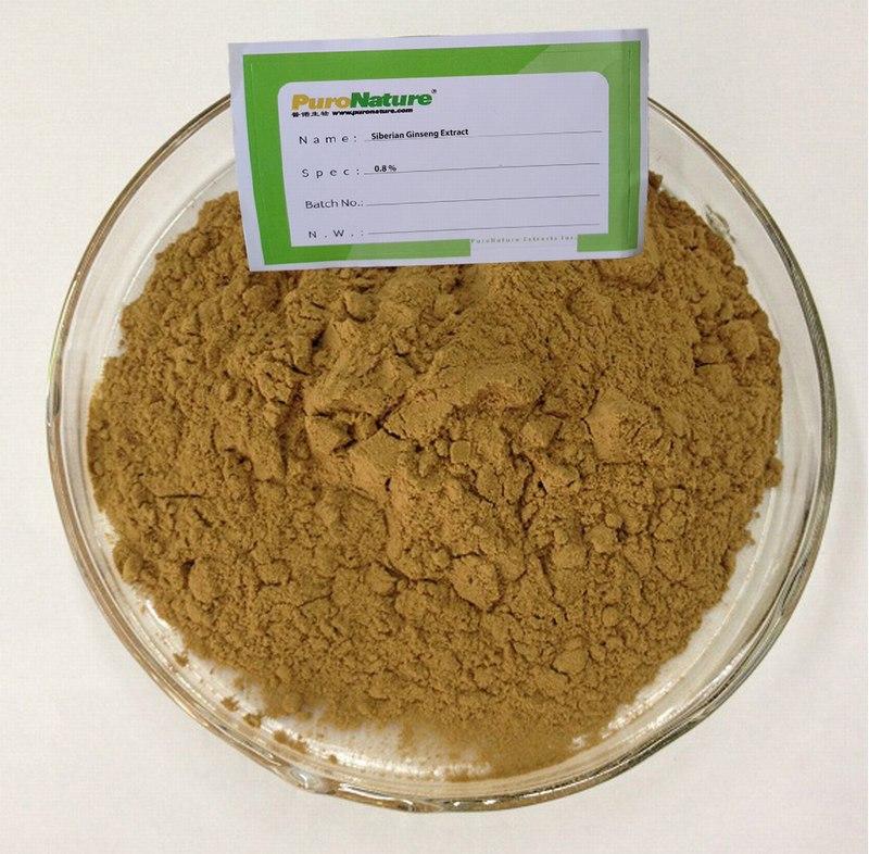 Siberian Ginseng Extract Acanthopanax Senticosus powder Eleutherosides 0.8%