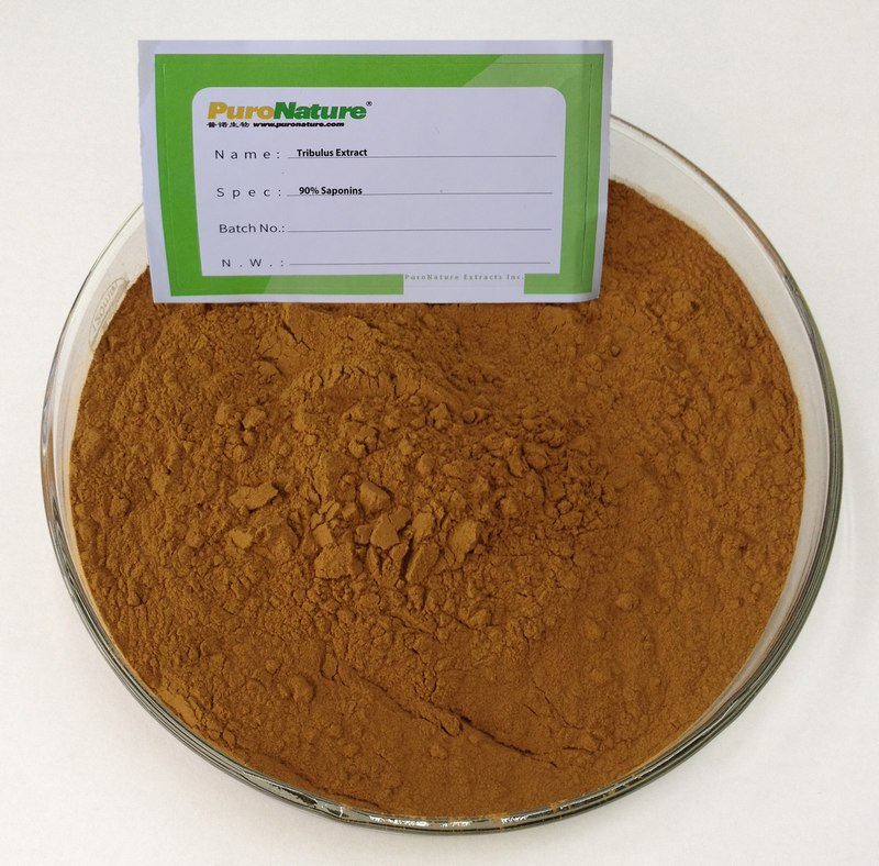 Tribulus Terrestris Extract powder ingredients contains Protodioscin and Briers saponins