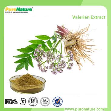 Valerian Extract 109-52-4 Valeric acids