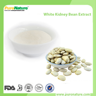 White kidney bean Extract 13401-40-6 Phaseolin