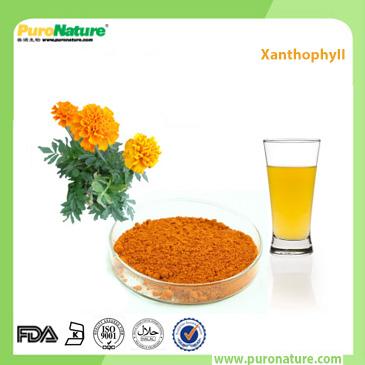 Marigold Extract Lutein E161b