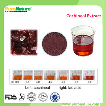 cochineal color