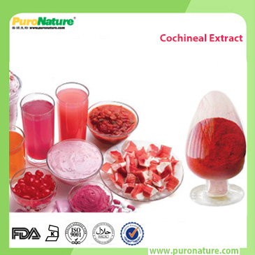 cochineal extract