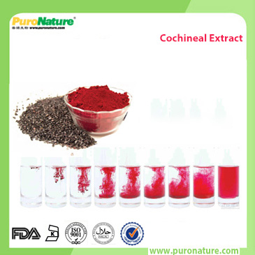 natural cochineal extract carmine powder