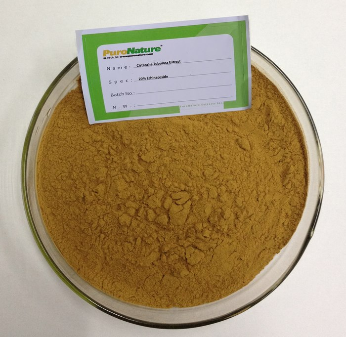 Cistanche Extract Cistanche Tubulosa Desertliving Deserticola Active Ingredient phenylethanoid glycosides Echinacoside Acteoside Verbascoside Kusaginin