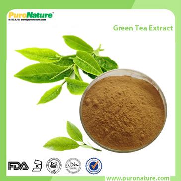 Green Tea Extract Polyphenol,EGCG, Catechins