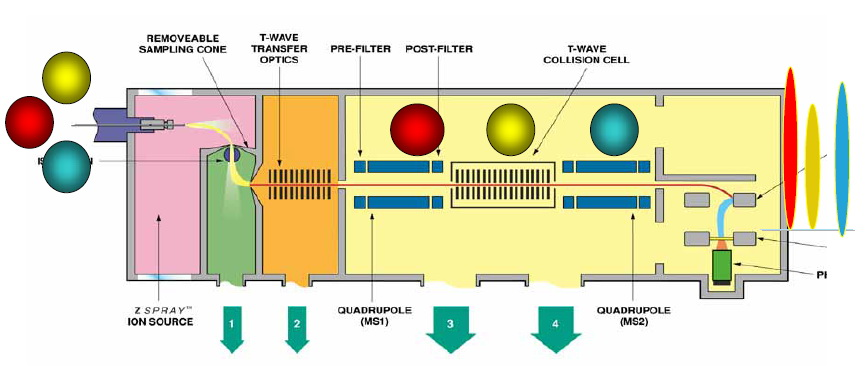 Main Analytical Instruments-LC-MS (Liquid Chromatography