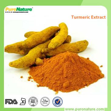 Turmeric Root Curcumin Extract 458-37-7