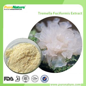 Tremella Fuciformis Extract 778577-37-0