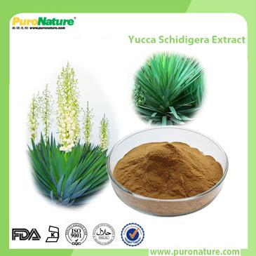 Yucca Schidigera Extract 90147-57-2